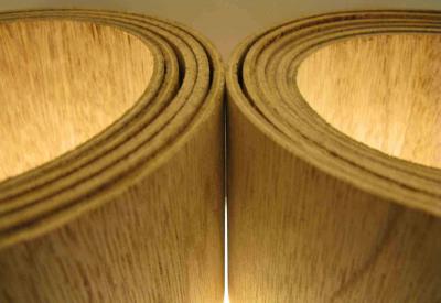 Ankush- Plywood- portfolio_11d