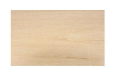 Ankush- Plywood- portfolio_548
