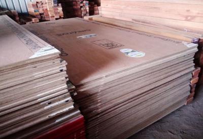 Nishant- Plywood- portfolio_77