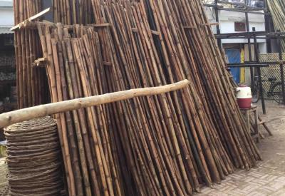 Sartaj- Wood- portfolio_9c2d79