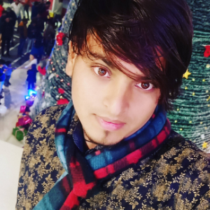 Arjun Singh - Greater noida - Painter