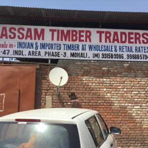 Assam Timber Traders - Mohali - Wood Supplier