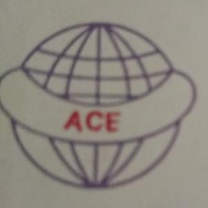 ACE Building Technologies Pvt Ltd - Gurgaon - Builder