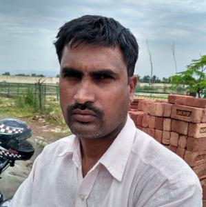 Jahid Ali - Chandigarh - Contractor