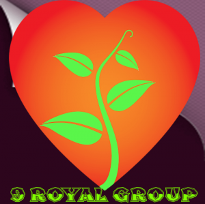 9 ROYAL GROUP - Dhanbad - Property Dealer