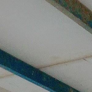 Mohd aley Umar - Noida - Contractor