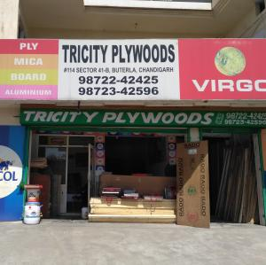 Tricity Plywoods - Chandigarh - Plywood Supplier
