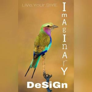 Imaginary Design - Pune - Architect