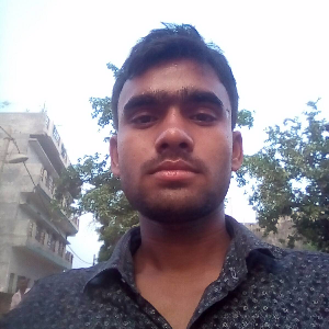 Manjesh Sharma - Lucknow - Carpenter