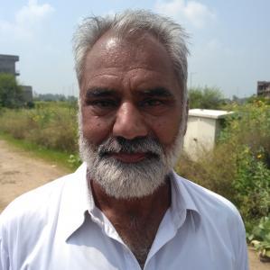 Davinder Singh Dhillion - Mohali - Contractor
